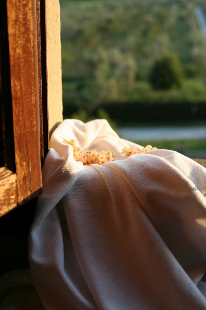 White currants, bedroom window, Villa Rospigliosi